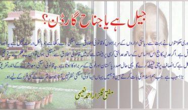 جیل ہے کہ جناح گارڈن؟ 5