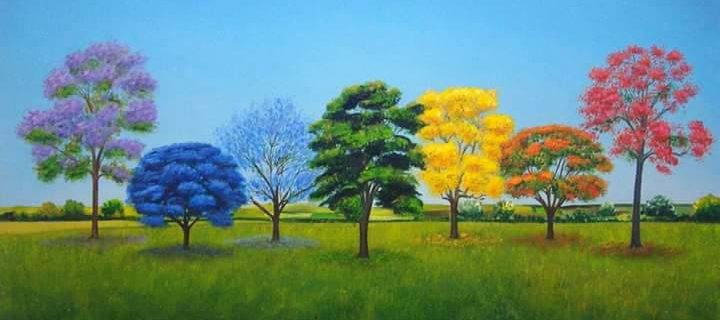 زندگی میں یہ7 درخت ضرور لگائیں : قاسم علی شاہ 7