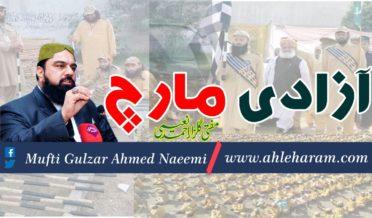 mufti gulzar ahmed Naeei article azadi march