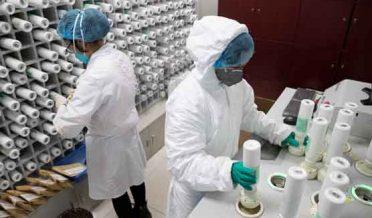 کرونا وائرس: چین نے اپنی پہلی ویکسین کے کلینکل تجربات کی اجازت دیدی