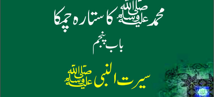 seerat ul nabi in urdu