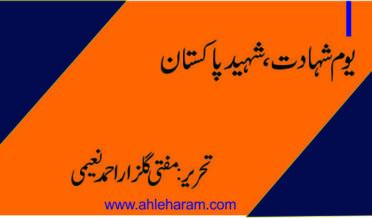 shaheed pakistan