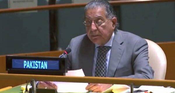 'عربوں کی اپنی مجبوری، ہم اتنے کمزور نہیں کہ اسرائیل کو تسلیم کرنے پر مجبور کیے جاسکیں ' پاکستان نے اعلان کردیا