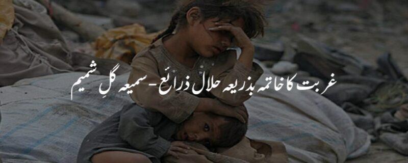 غربت کا خاتمہ بذریعہ حلال ذرائع