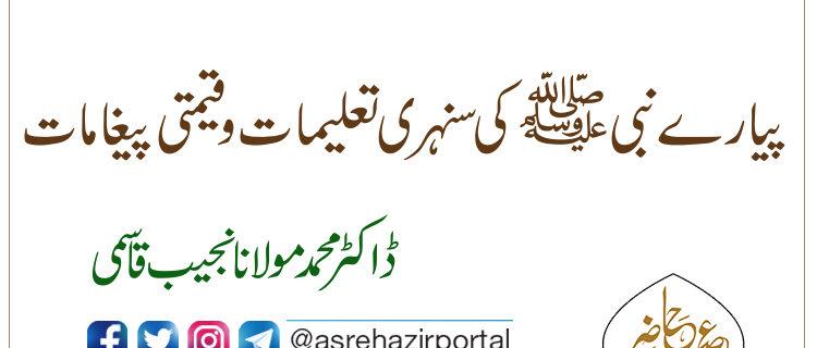 پیارے نبی ﷺ کی سنہری تعلیمات وقیمتی پیغامات